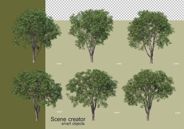 3d rendering of various tree design isolated