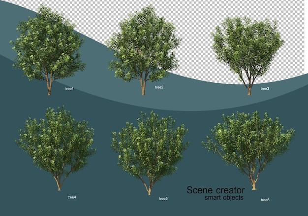 3d rendering of various tree design