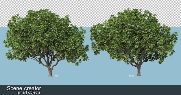 3d rendering of various tree shapes and types Premium Psd