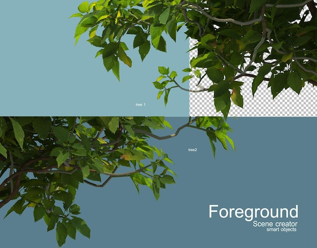 3d rendering of various trees foreground