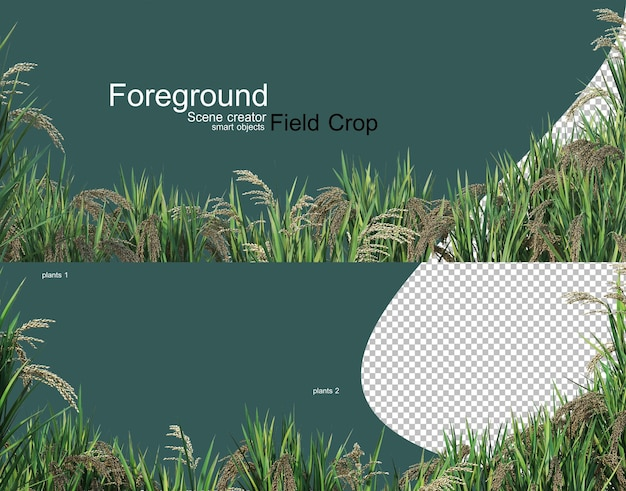 3d rendering of various types of agronomy