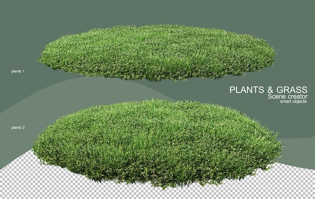 3d rendering various types of bush arrangements