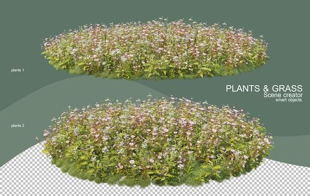 3d rendering various types of bush arrangements