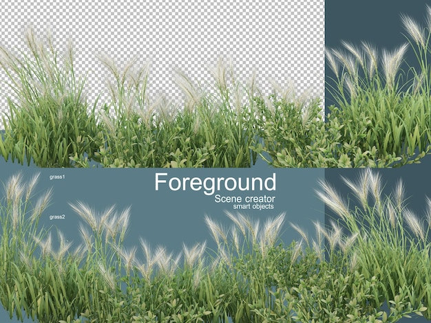 3d rendering various types of grassland