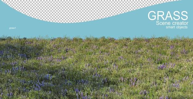 3d rendering of various types of grasslands