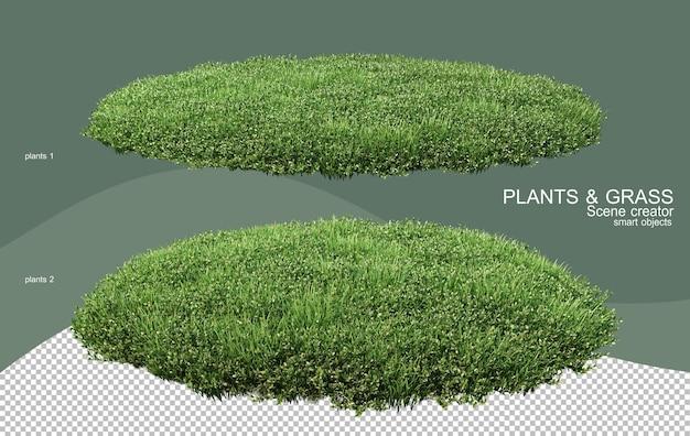 3d-рендеринг различных типов кустов
