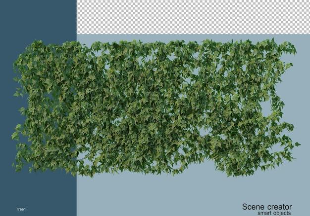 さまざまな種類の木の3dレンダリング