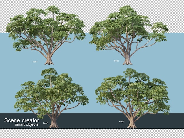 다양한 유형의 나무 3d 렌더링