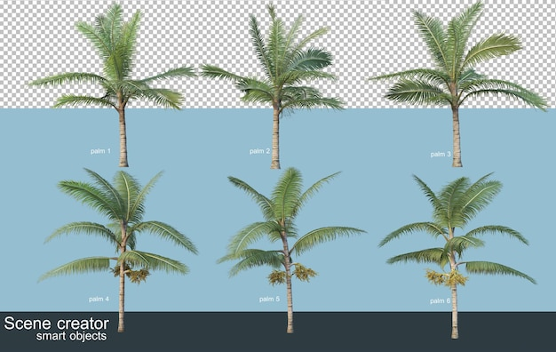 3d rendering of various types of palm trees Premium Psd
