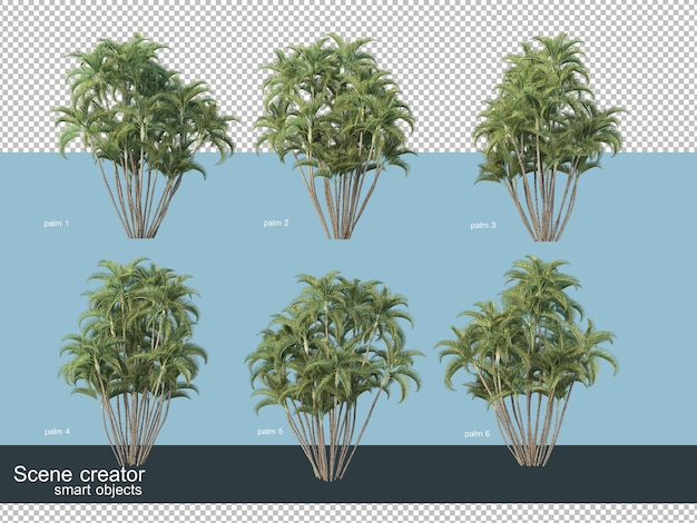 3d rendering of various types of palm trees