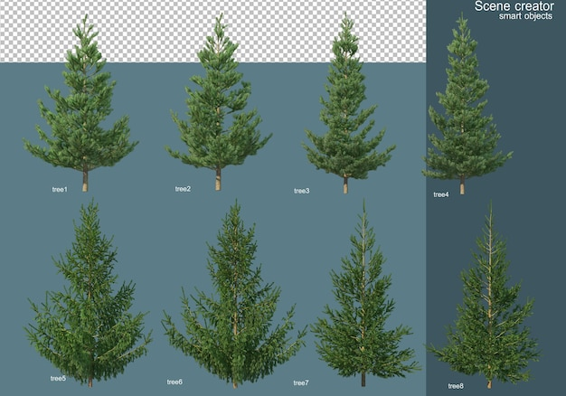 3d rendering of various types of pine trees