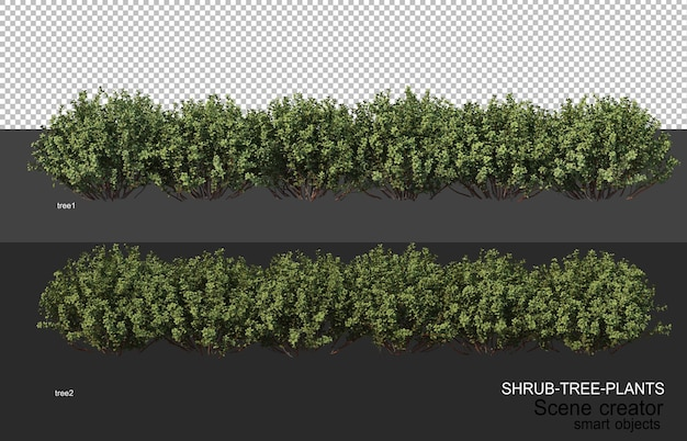 3d rendering of various types of shrub layouts