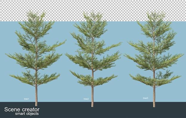 3d rendering various types of trees