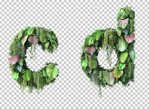 3d rendering of vertical garden lowercase alphabet c and alphabet d