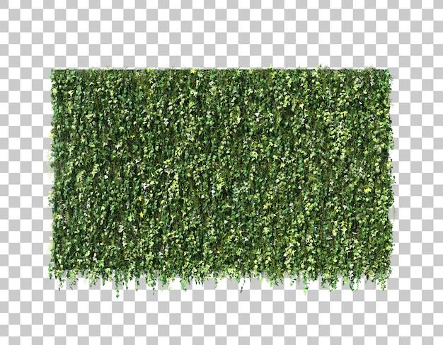 3d rendering of vertical garden wall