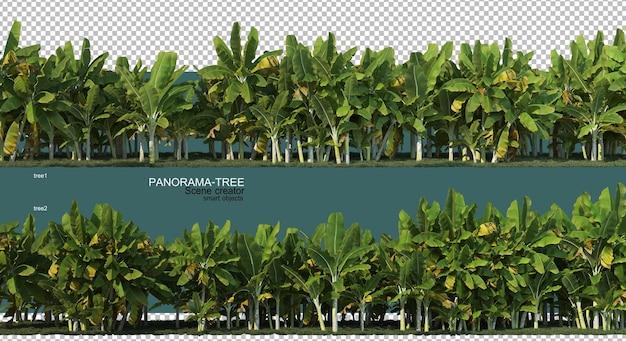 3d rendering of wide angle tree arrangement