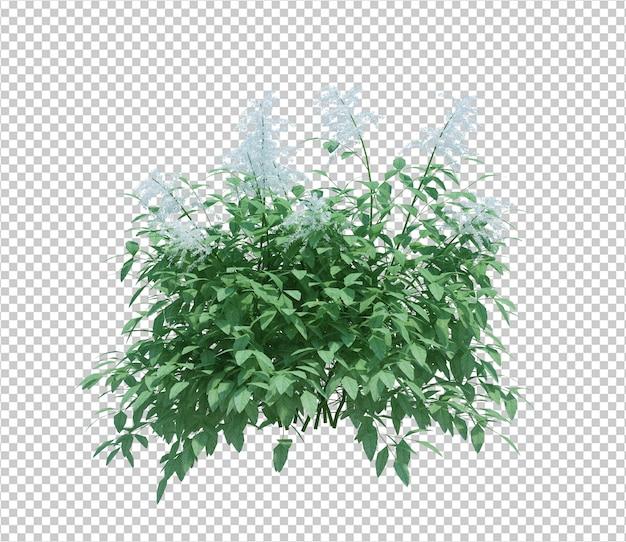 3d визуализация куст с цветами изолированные