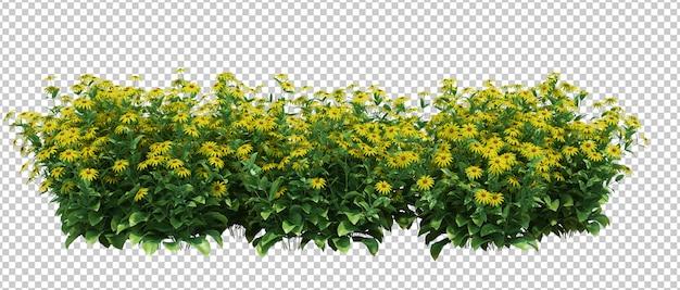 3d визуализация кисти дерево изолированные