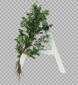 3d-рендеринг ползучего дерева на алфавите