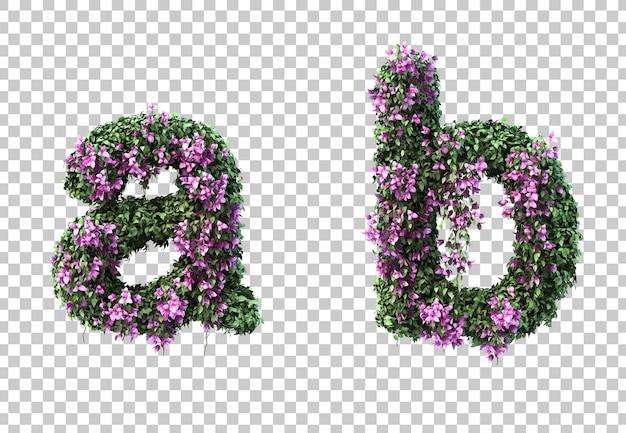 3d-рендеринг бугенвиллии буквой а и буквой б