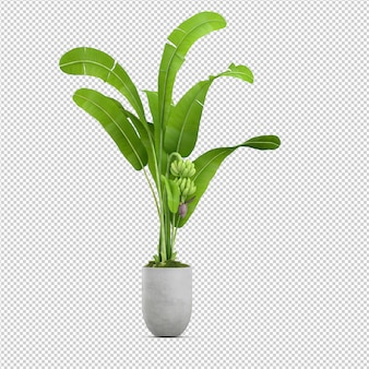 Изометрические 3d-рендеринг растений