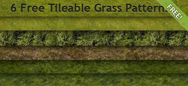 6 бесплатный бесшовное шаблоны трава