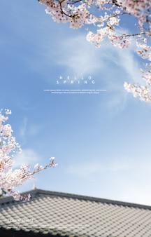 美しい春の花の背景