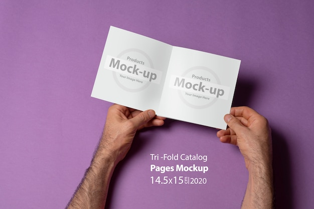 紫色の表面に開いた正方形サイズの三つ折りカタログを保持している男性の手