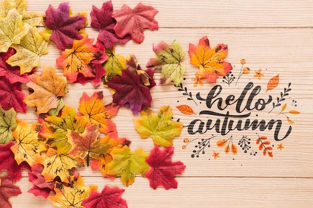 乾燥した葉のカラフルな配置