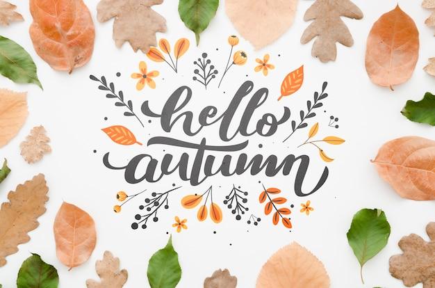 葉に囲まれたフラットレイアウトこんにちは秋