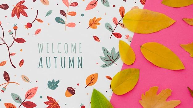 ピンクの背景の横にある秋を歓迎