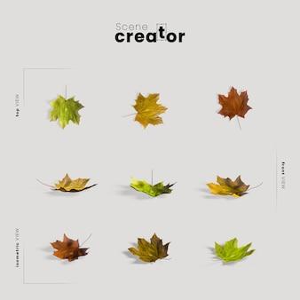 秋の葉と感謝祭の配置