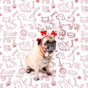 赤いコロネットモックアップとかわいい犬