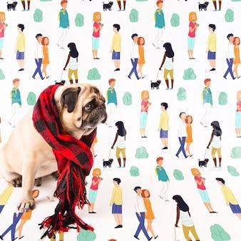 冬のショールを着てかわいい犬