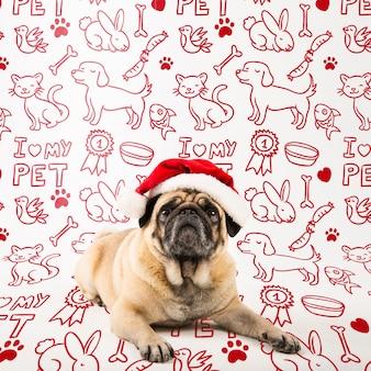 サンタクロースの帽子をかぶっているかわいい犬