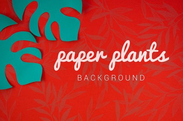 モンステラの青い葉と紙植物の背景