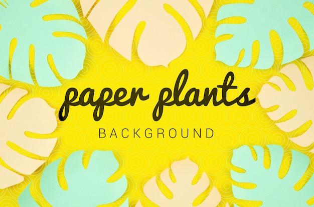 モンステラと紙植物の背景の葉フレーム