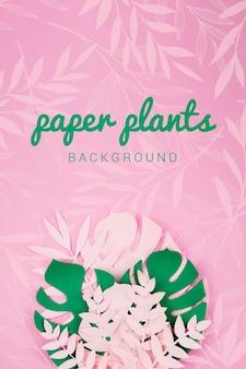 紙の緑はピンクの背景に植物を残します