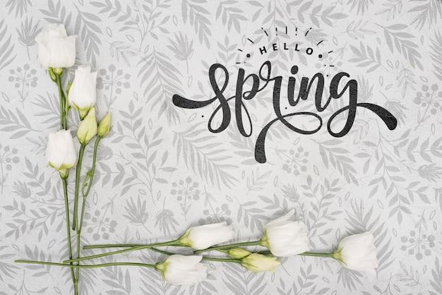 白い春のバラのトップビュー