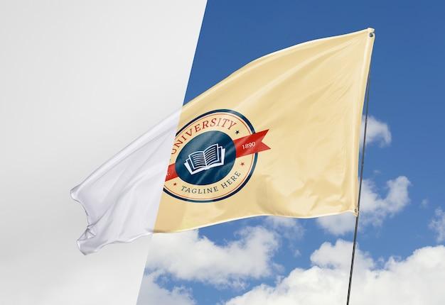 Макет концепции флага университета
