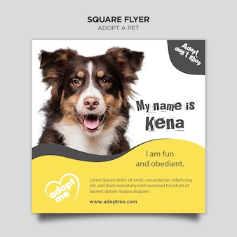 Принять животное квадратный флаер