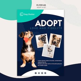 Принять шаблон флаера для животных