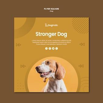 Симпатичная собака квадратный стиль флаера