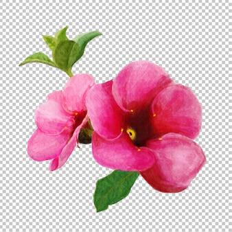 ピンクの花の水彩画