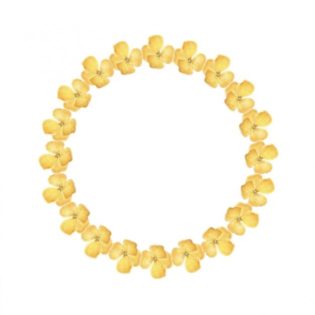 水彩の黄色のウォールフラワーリース