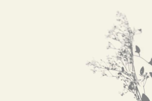壁に葉の影