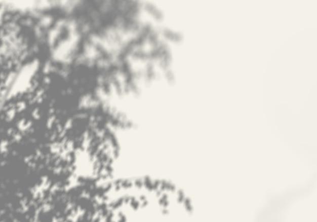 Фон тени деревьев на белой стене
