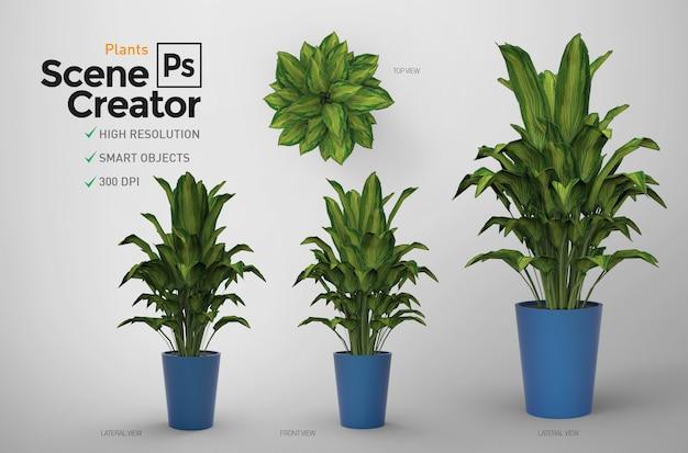 植物。シーンクリエーター。