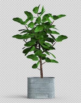 金属製のポットで孤立した植物のレンダリング