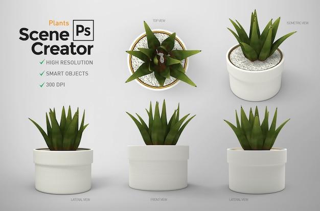 植物。シーン作成者。資源。